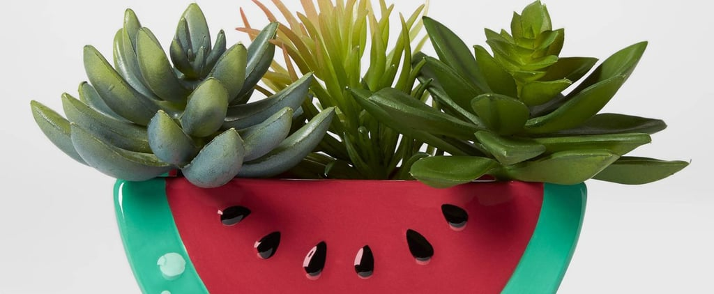 Fruit and Animal Planters From Target