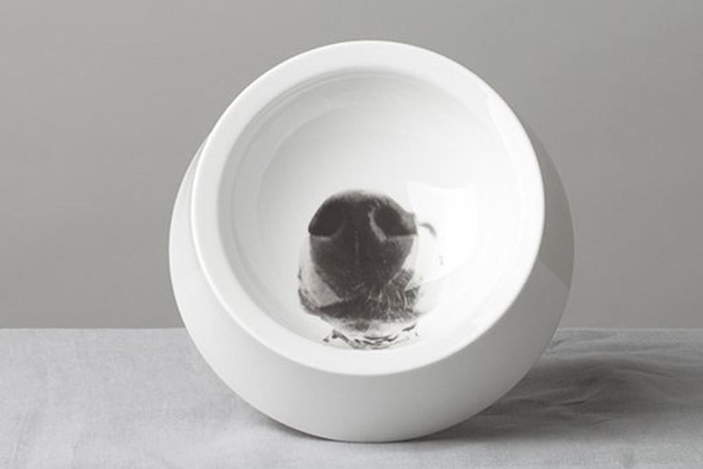 Echo China Dog Bowl, $77