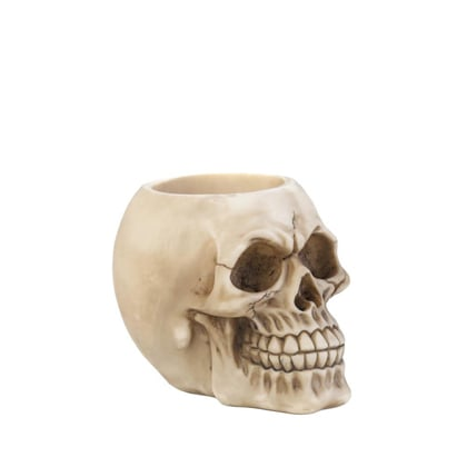 Tom & Co. Dragon Crest Skull Pen Holder ($11)