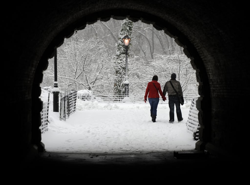 Snow in Central Park Photos