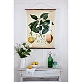 Antique Botanical Prints Work in Any Room