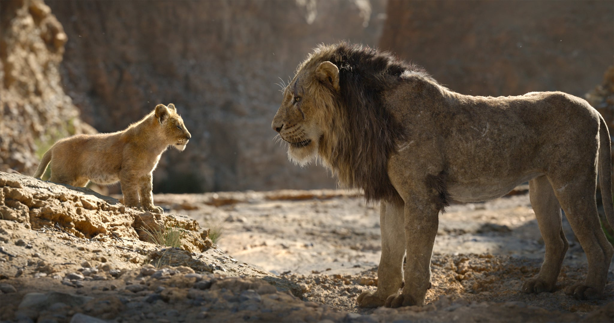 THE LION KING, from left: young Simba (voice: JD McCrary), Scar (voice: Chiwetel Ejiofor), 2019.  Walt Disney Studios Motion Pictures / courtesy Everett Collection