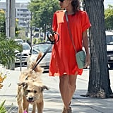 Eva Mendes Walking Ryan Gosling's Dog in LA
