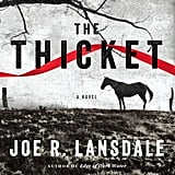 The Thicket by Joe R. Lansdale
