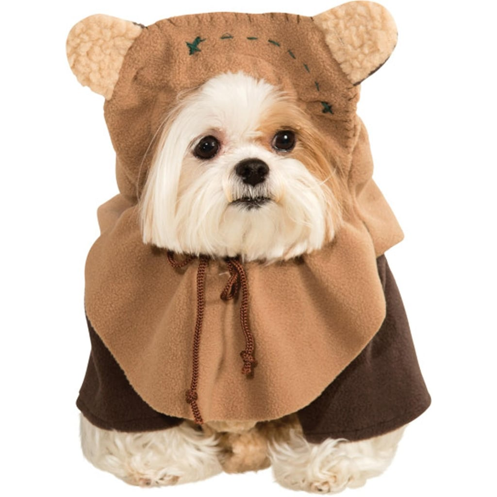 Dress up your pet day - Happy Dress Up Your Pet Day Everyone