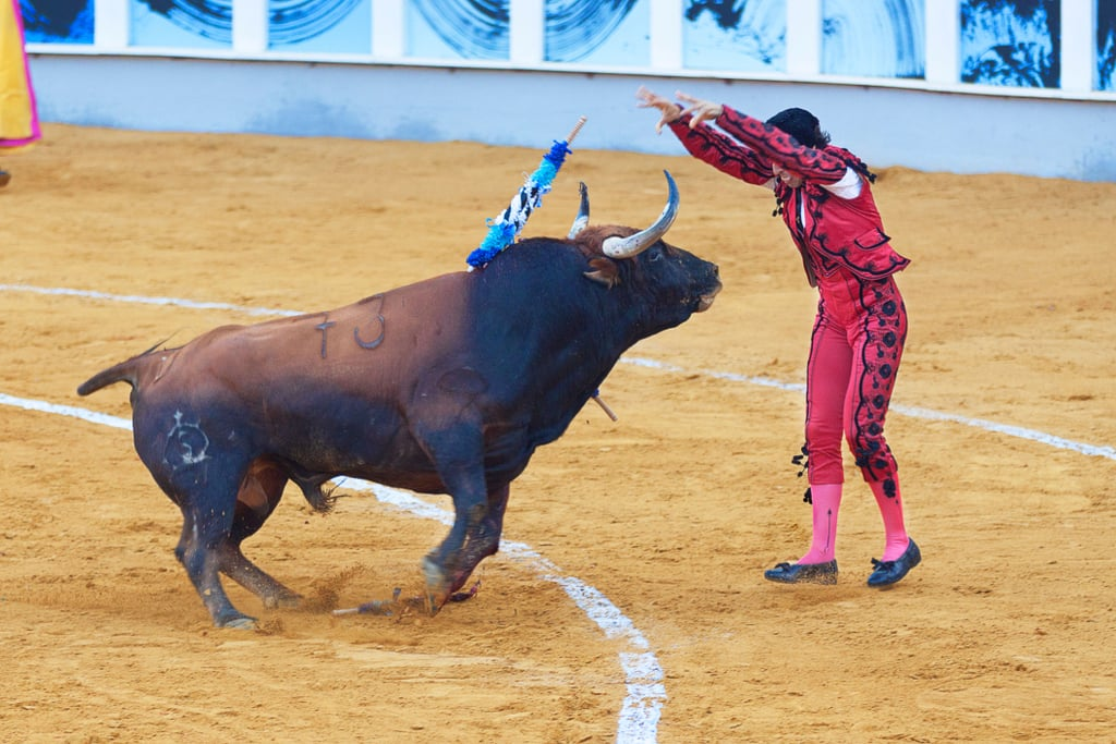 Bulls get angry at the sight of red.