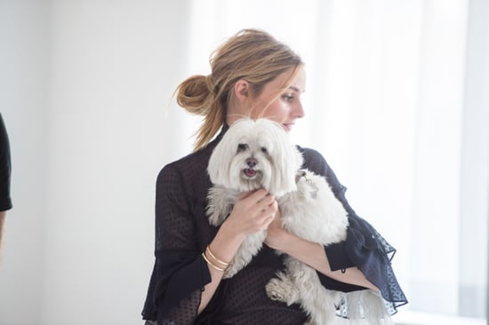 Olivia Palermo + Chelsea28 Fall 2016 Collection