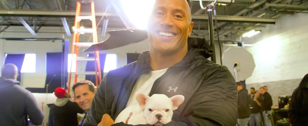 Dwayne Johnson Playing With Puppies Video