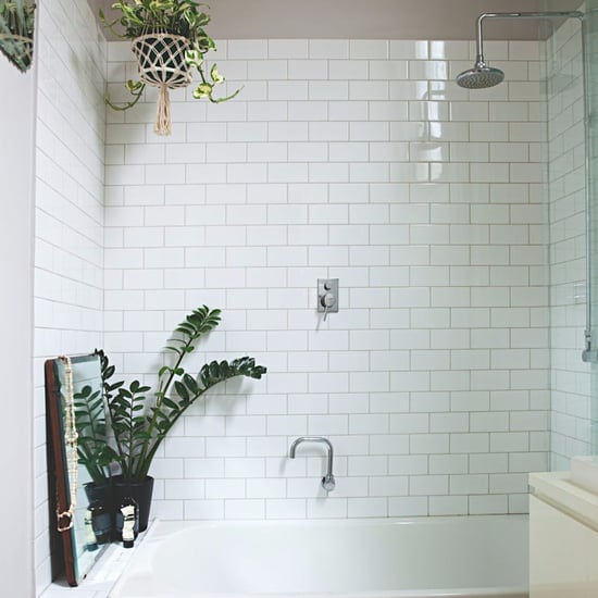 Shower Plants Trend