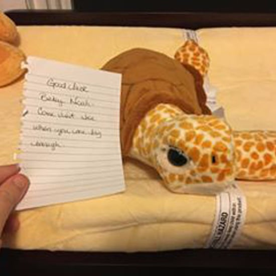 Stranger Gives Parents of Premature Baby a Stuffed Turtle