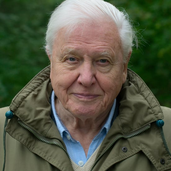 David Attenborough's Best Advice For Sustainable Living