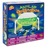 Scientific Explorer Ant Lab Gel Station Science Kit