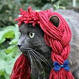 Raggedy Ann Cat Costume
