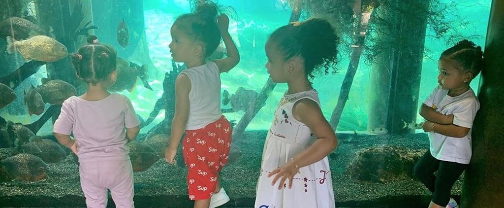 Stormi Webster Photo at the Aquarium July 2019