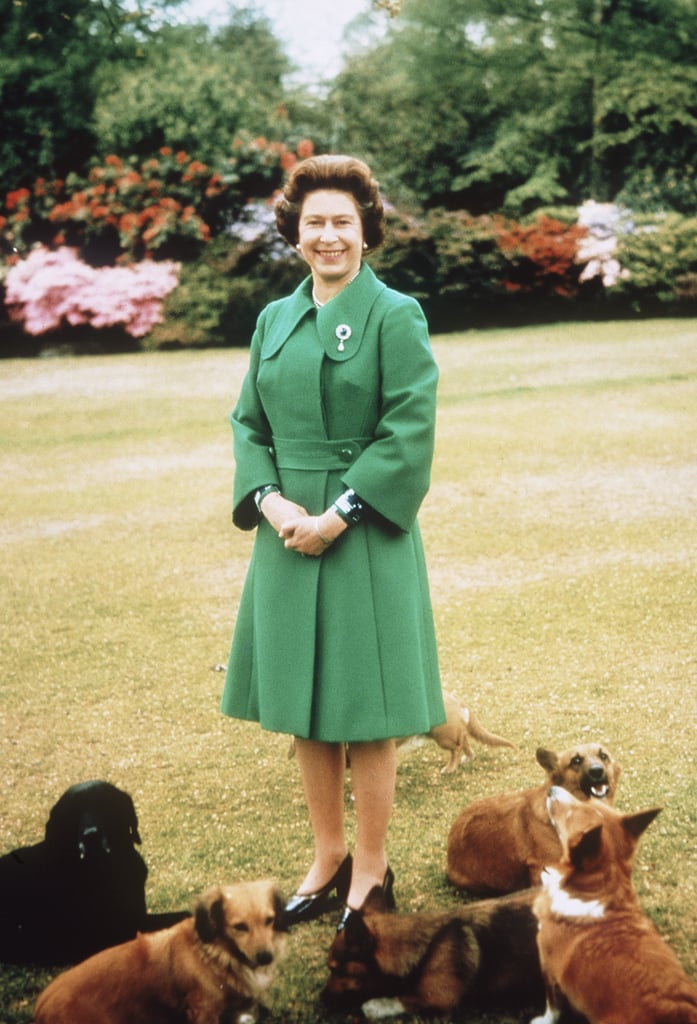 At Sandringham House, the queen was surrounded by her four-legged brood in 1980.