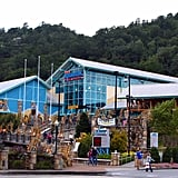 Ripley's Aquarium of the Smokies (Tennessee)