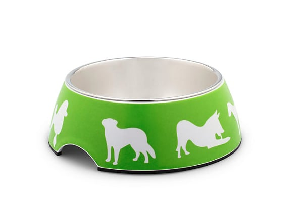 How to make your pup's favorite time of the day even better? Brighten up his meals with this adorable C Wonder pet bowl ($18).