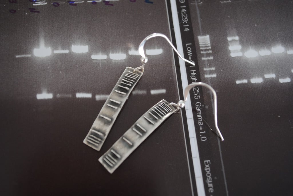 DNA Ladder Earrings