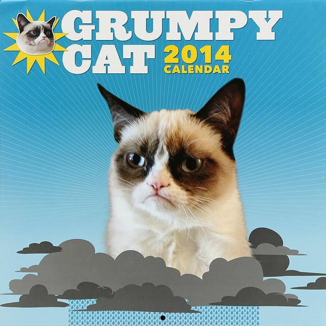 Grumpy Cat Calendar Geeky 2014 Calendars Popsugar Tech Photo 18