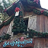 Splash Mountain boasts its own tree hanging high up above the street.