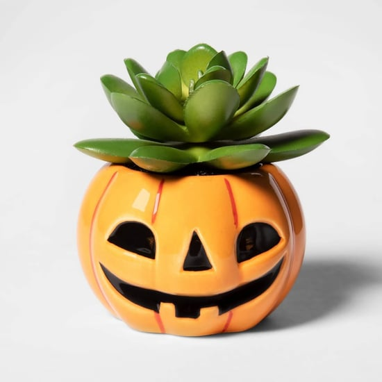 Halloween Succulents From Target