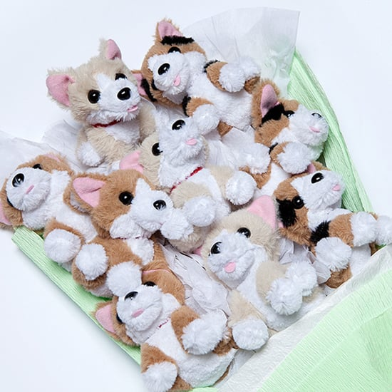 Stuffed Animal Bouquets