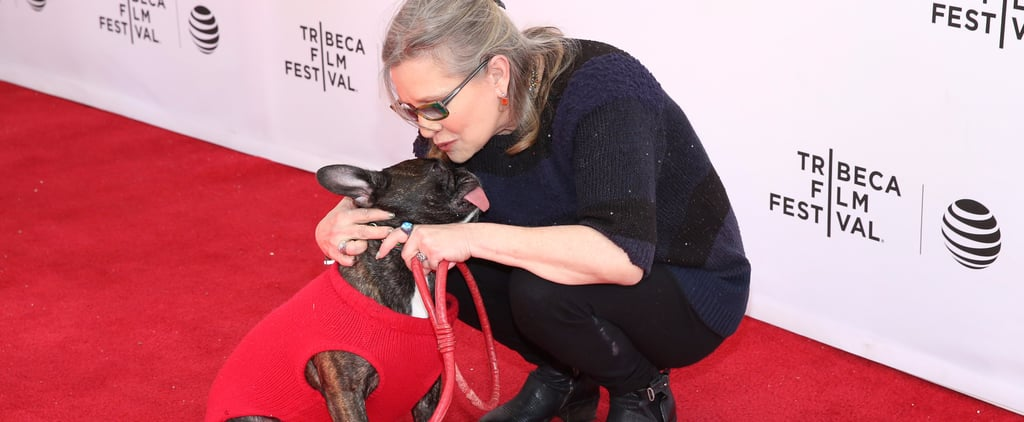 Carrie Fisher's Daughter, Billie Lourd, Will Get Her Therapy Dog, Gary