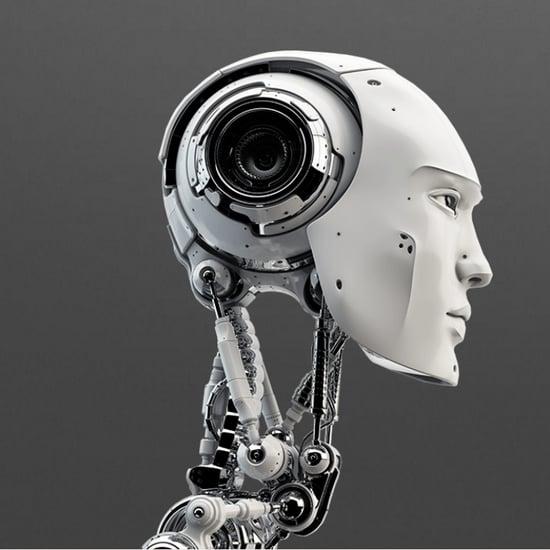Artificial Intelligence Beauty Ranking Tool