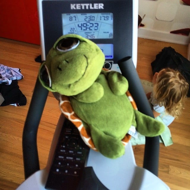Carey Hart had some help with his morning spin thanks to some company from his daughter, Willow, and her turtle pal. Source: Instagram user hartluck