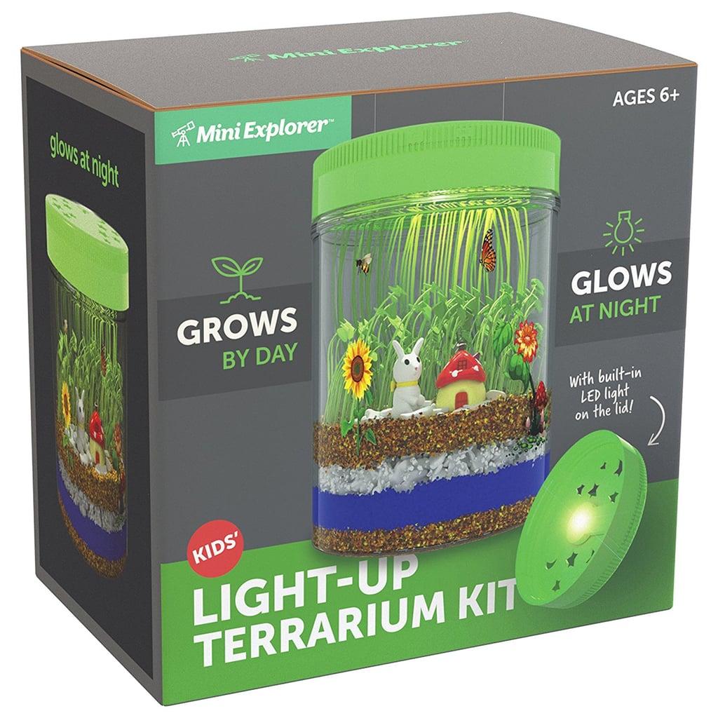 For 6-Year-Olds: Mini Explorer Light-up Terrarium Kit for Kids with LED Light on Lid