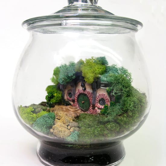 Terrarium Gifts on Etsy