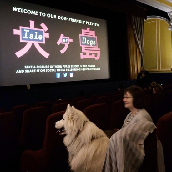 Isle of Dogs Dog-Friendly Screenings