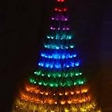 Light Up Christmas Tree ($35)