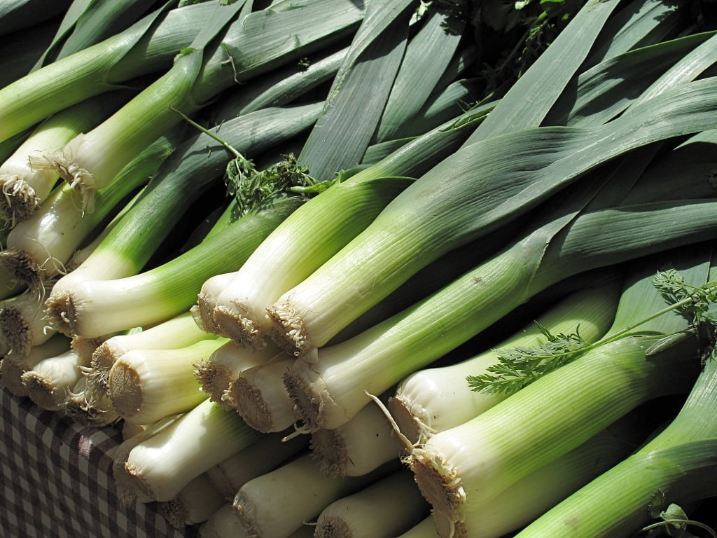 The Spring Food: Leeks