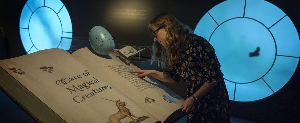 التجول في معرض هاري بوتر تاريخ السحر عبر الإنترنت