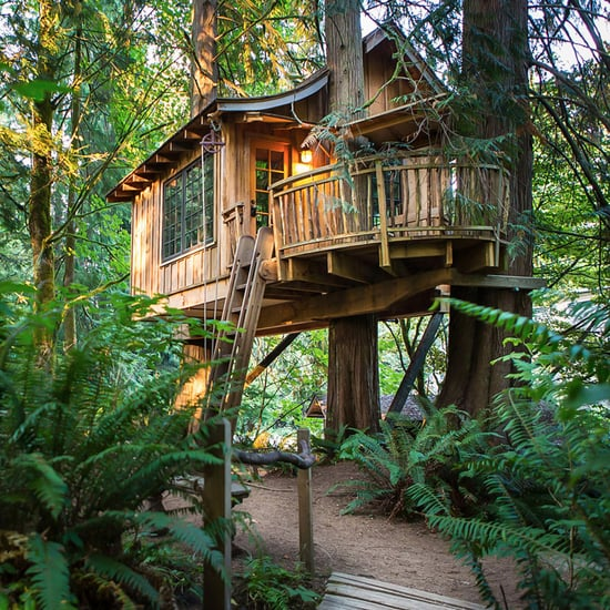 Tree House Vacations