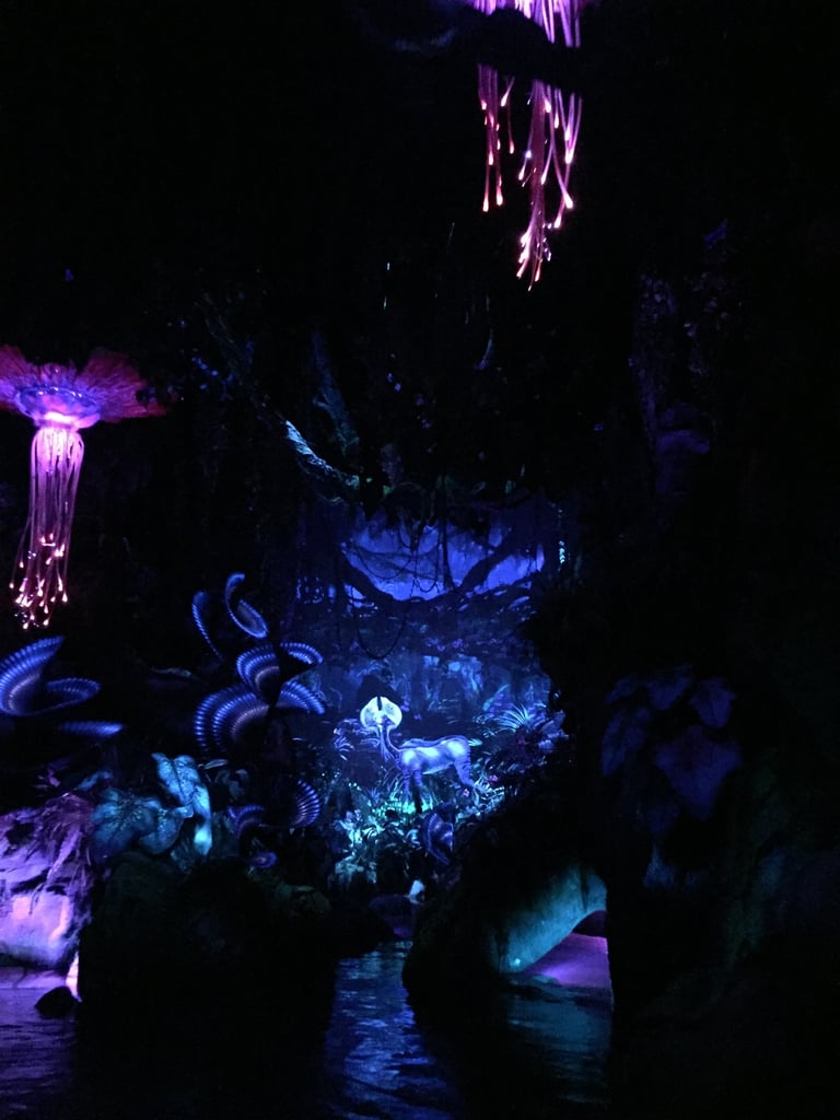 Walt Disney World's highly anticipated Avatar-inspired Pandora is fit for explorers of all ages. The over-the-top land — nestled within Animal Kingdom — is mostly about the floating mountains and bioluminescent plants. Then, of course, there are the rides.  Pandora offers two vastly different rides. The Na'vi River Journey is the more suitable one for kids of all ages. Meanwhile, Avatar Flight of Passage is an intense and fast-moving 3D ride that's better suited for big kids, tweens, and adults. While Avatar Flight of Passage has a 44-inch height requirement, the Na'vi River Journey does not. The Na'vi River Journey is a calm and slow-moving boat ride that can best be compared to Magic Kingdom's Pirates of the Caribbean or Epcot's Frozen Ever After. Even though Na'vi River Journey is a tamer ride, that doesn't make it any less fun for the whole family.  As you approach the line, you'll see an intricate wooden structure depicting the Na'vi Shaman of Songs. The line itself is filled with interesting sights and lush plants that make for the perfect family photo op. Once inside, you'll board a cozy two-row boat that seats about three to four people per row.  Then the real magic happens. As the boat begins to move, explorers make their way deeper and deeper into a bioluminescent rainforest, where they can gawk at the many plants and animals that inhabit it. Every single corner of the Na'vi River Journey is taken up by a glow-in-the-dark plant or incredible animal projections that will make you question your vision. By the end of the ride, you'll encounter the Shaman of Songs. The character's animatronic, by the way, will be the most advanced you've ever seen.  Though your little ones might not have ever seen Avatar, as it has been eight years since its release, they'll still be awestruck by this eye-catching attraction.       Related:                                                                                                           There Are Boba Balls in Everything — and Other Food Revelations From Disney's Pandora