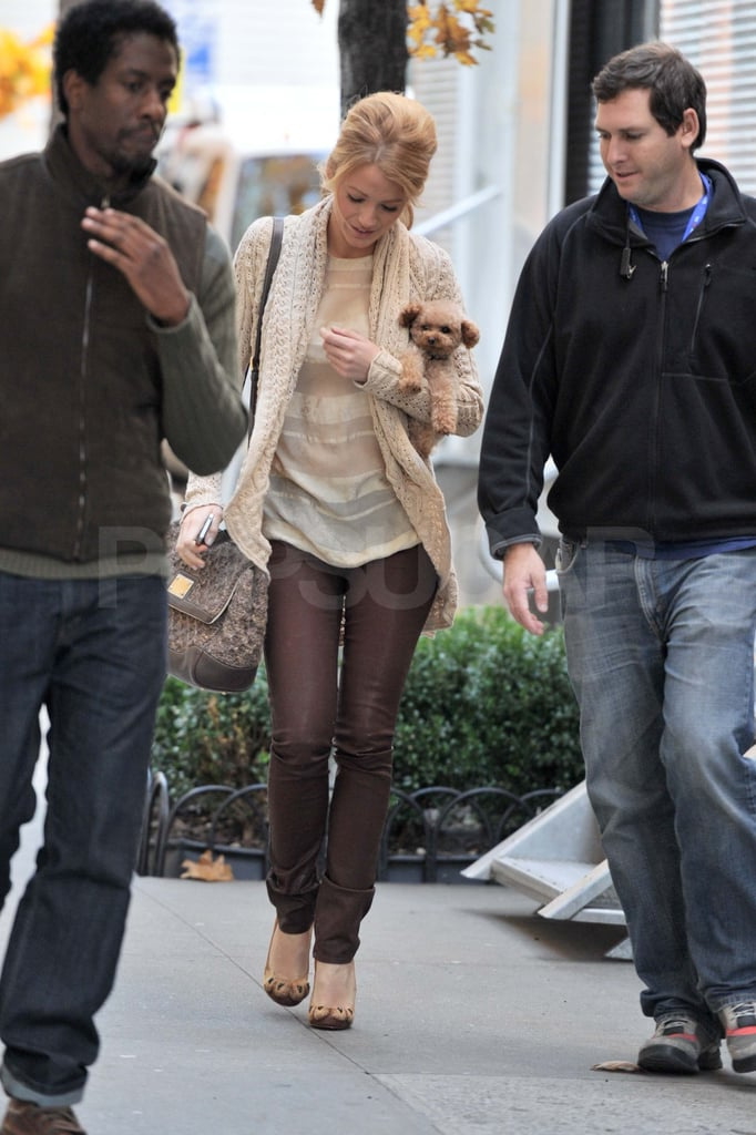 Blake Lively and her dog on the Gossip Girl set.