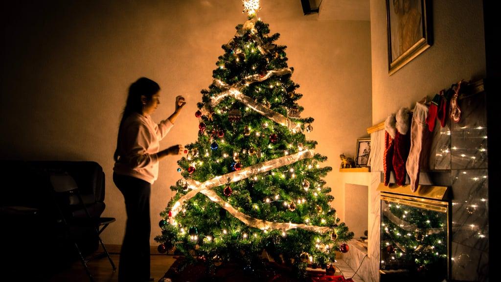 Types of Christmas Trees | POPSUGAR Moms