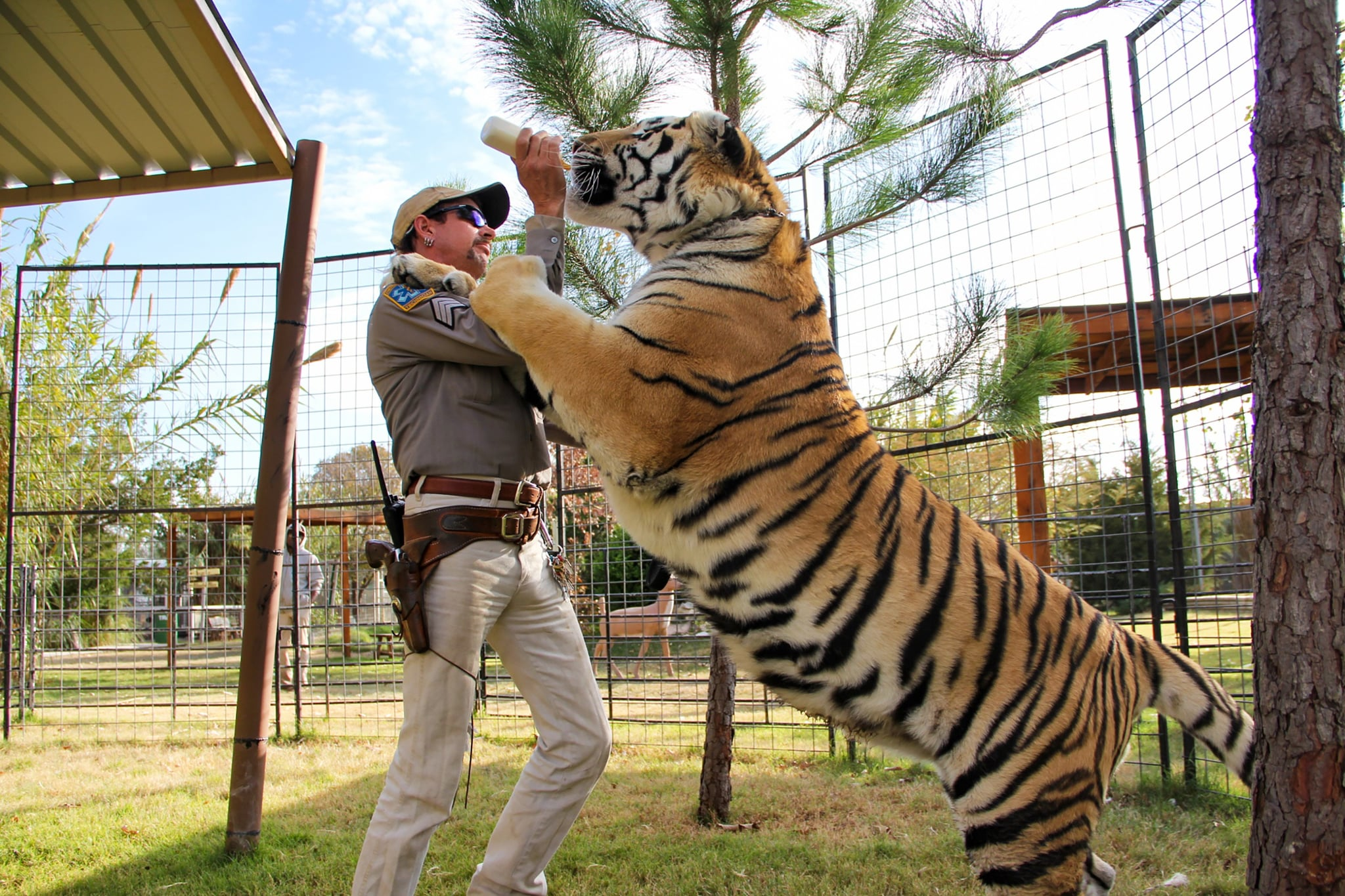 TIGER KING, Joe Exotic, (Season 1, ep. 101, aired March 20, 2020). photo: Netflix / Courtesy Everett Collection