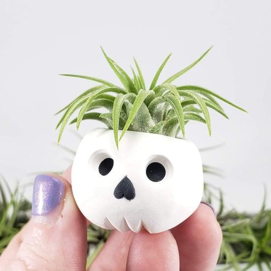 Mini Halloween Air Planters on Etsy