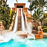 Water Slides at Aquaventure