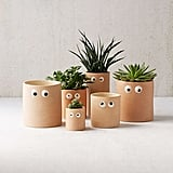 Henry Googly Eye Planter