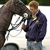 The Windsors are famous animal-lovers, and Harry proved it when he planted a smacker on his polo pony.