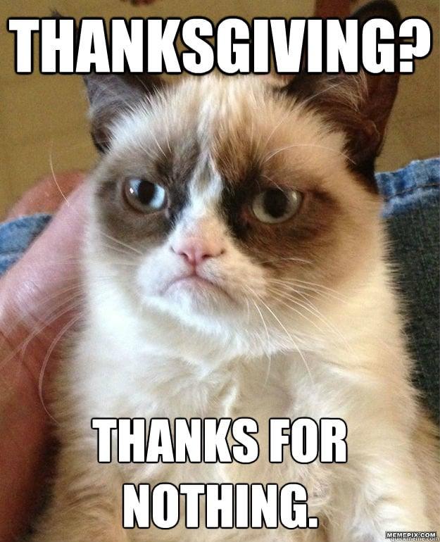 4d5b40b9962e5c70_3rvib6 thanksgiving memes popsugar tech