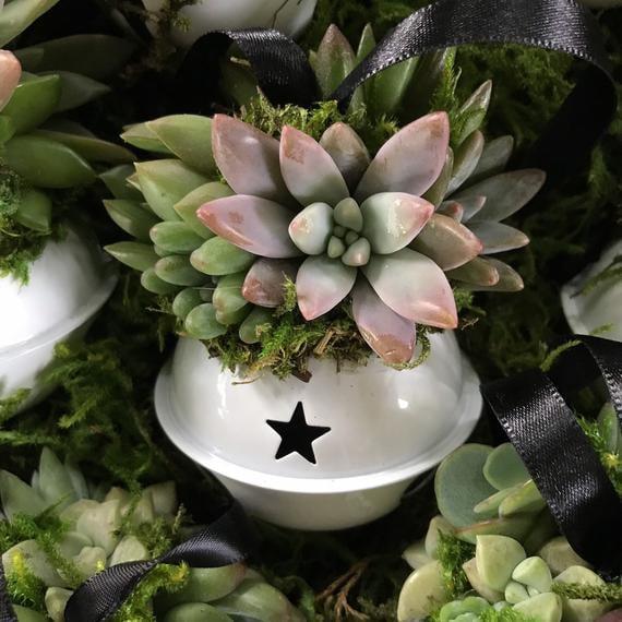 Succulent Jingle Bell Ornament