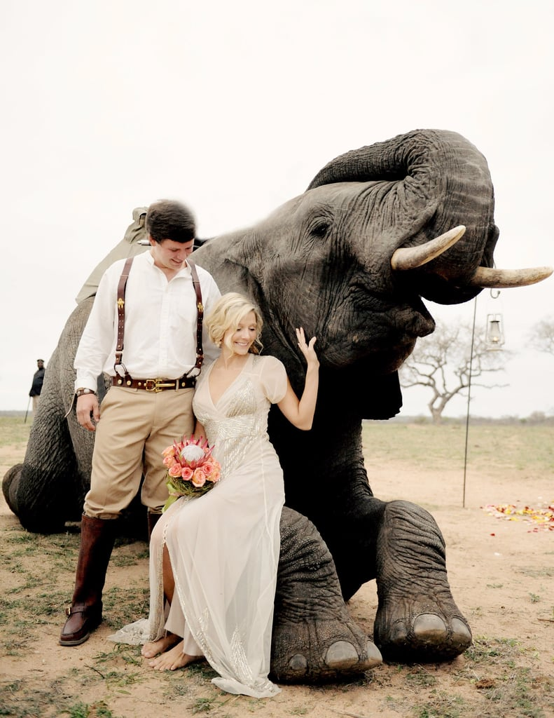 South African Safari Wedding With Elephants