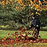 A worker cleared up fallen leaves at London's Royal Botanic Gardens.