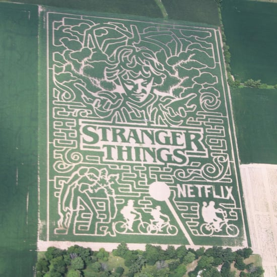Stranger Things Maze in Indiana 2018