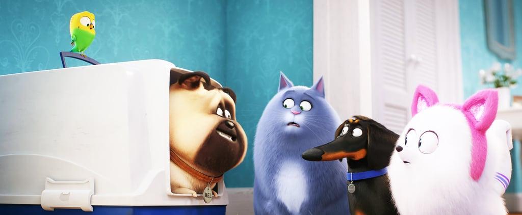Best Movies About Animals on Netflix